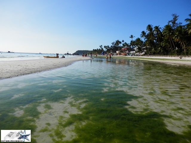 boracay island algae