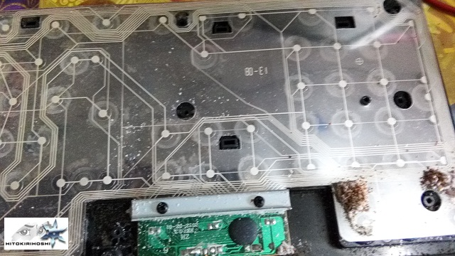 keyboard attacked by ants